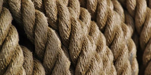 brown roping